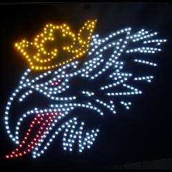 Truck Led Logo