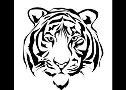 Тигр, Медведь