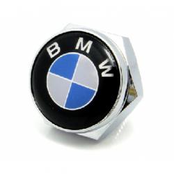 болты номерного знака с логотипом BMW,Декоративный болт для номерного знака с логотипом BMW,Болты для крепления госномера BMW,декоративных болтов на номерные знаки логотипом BMW купить,заказать,доставка