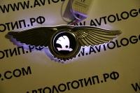 Крылатый логотип Skoda с подсветкой