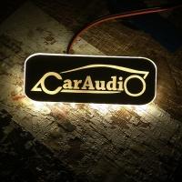 Светодиодный поворотник с эмблемой Car Audio