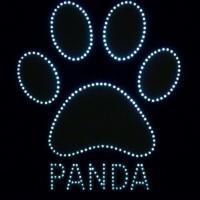 Светящийся логотип PANDA