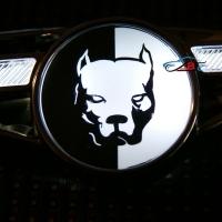Светодиодный поворотник с логотипом Pitbull